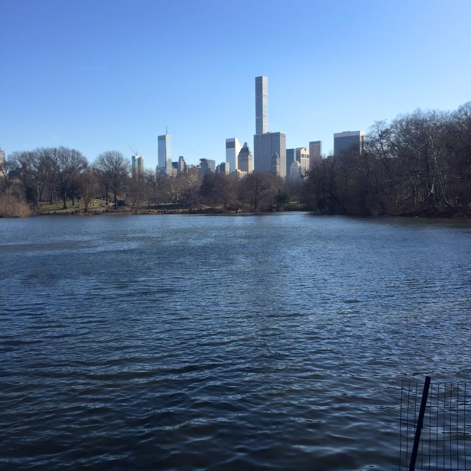 Running in Central Park in New York City