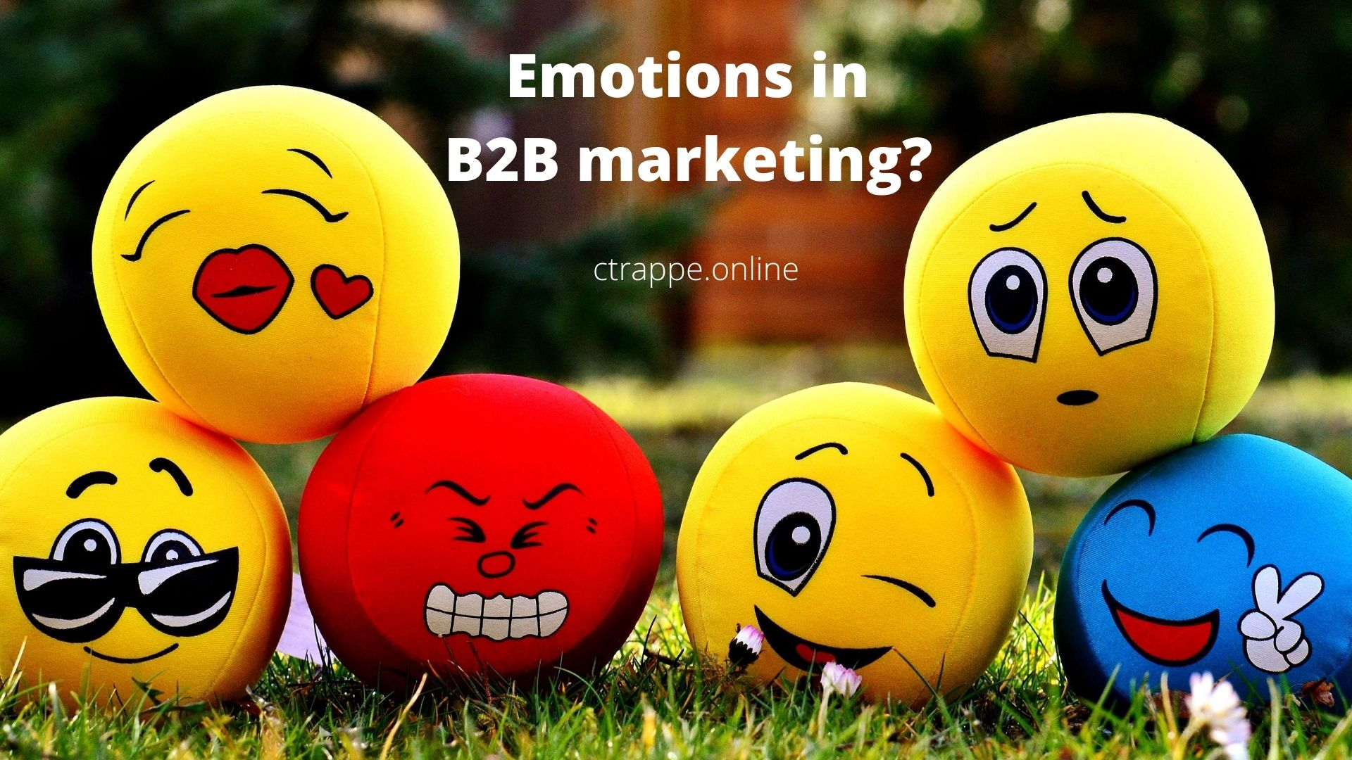B2B marketing strategy and emotion